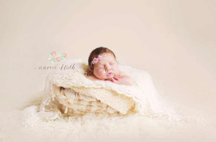 Newborn baby basket photography south florida